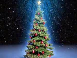 Christmas Tree IMM